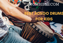 Best Bongo Drums for Kids