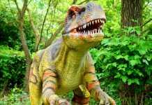 Toy Dino