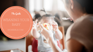 What is Weaning? When to Wean a Baby?