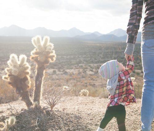 Roles Of Parents In Child Development